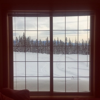 Could my view get any better from my living room?